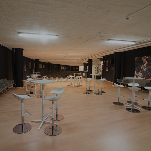 VIP Room 2